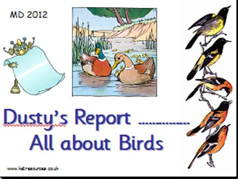 Animal report writing ks1